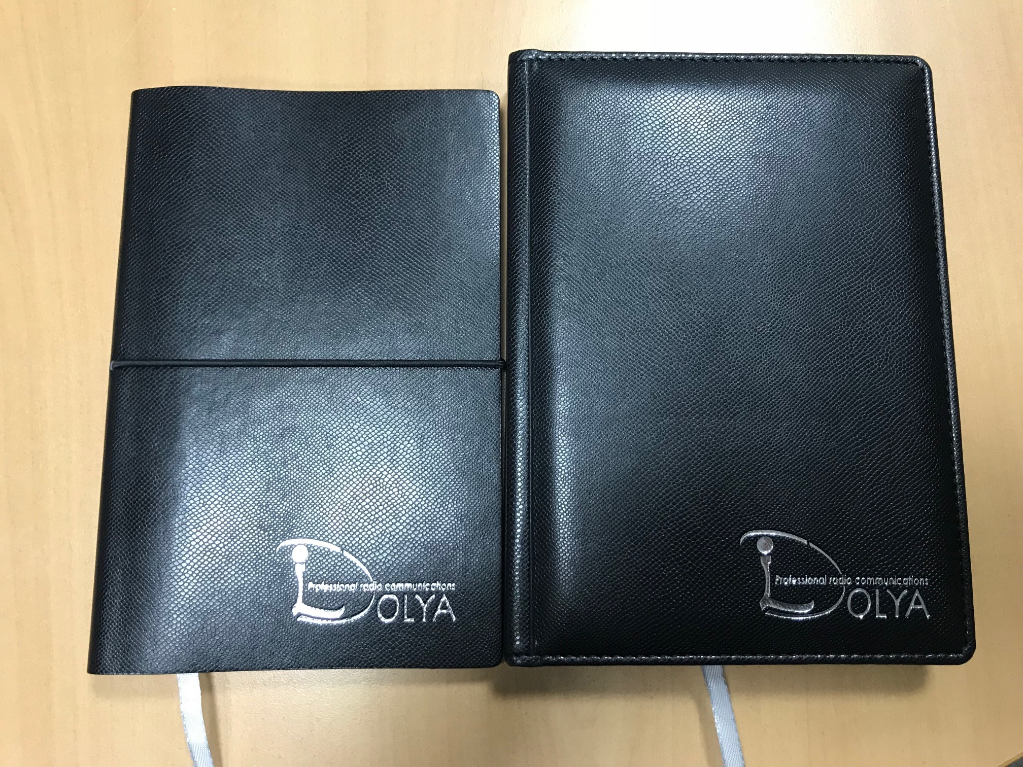 Dolya & Co notebooks